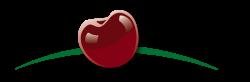 logo-scrolled-250